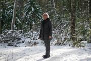 24th Jan 2020 - Winter walk