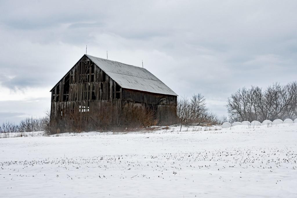Has Seen Better Days by farmreporter