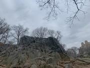 30th Jan 2020 - Central Park, New York