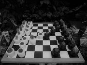 1st Feb 2020 - Cacti Chess