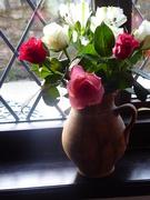 1st Feb 2020 - Winter roses