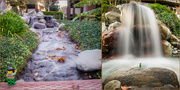 1st Feb 2020 - (Day 353) - Rivers & Waterfalls