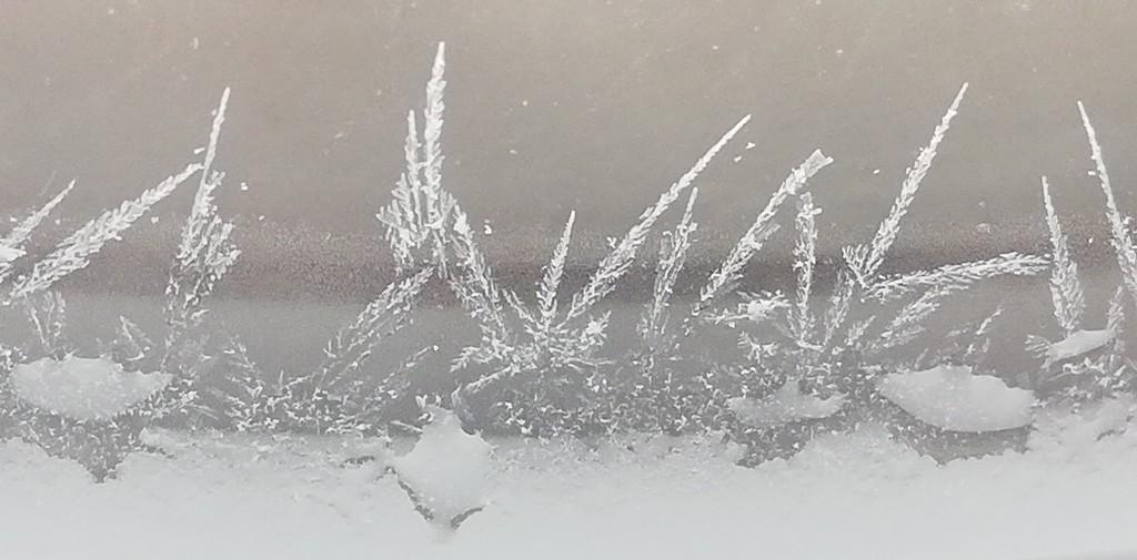 Frozen by julianneovie