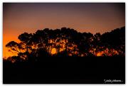 2nd Feb 2020 - Stunning Sunset #3