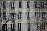 2nd Feb 2020 - thru an old glass window