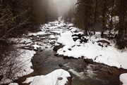 1st Feb 2020 - Winter stream