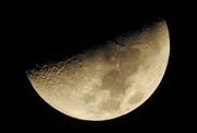 2nd Feb 2020 - Night moon