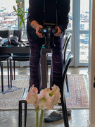 2nd Feb 2020 - Capturing the Amaryllis from Above