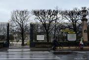 30th Jan 2020 - Tuileries