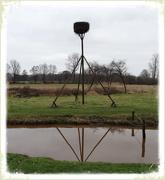 4th Feb 2020 - stork's nest...