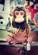 31st Jan 2020 - Scary Monkey