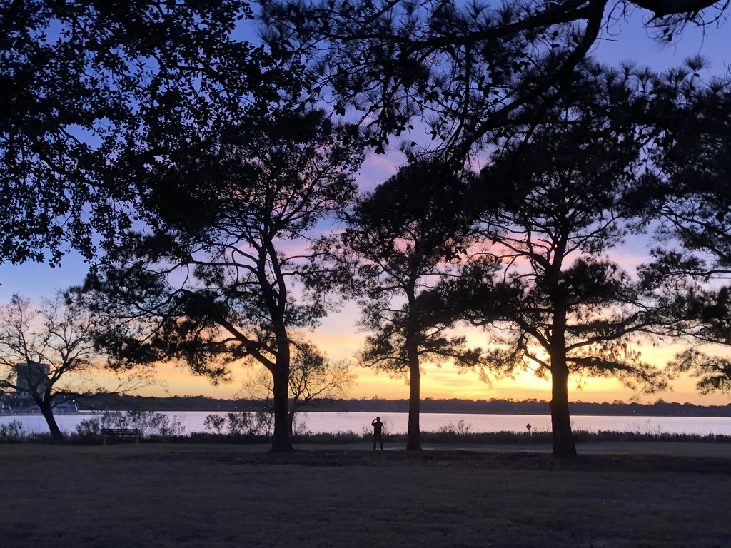 Sunset along  the Ashley River in Charleston by congaree