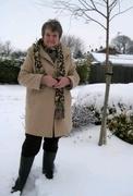 4th Feb 2020 - Snow