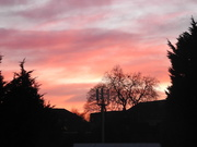 3rd Feb 2020 - Sunset