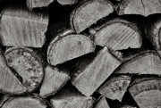 5th Feb 2020 - Forms in Nature: Woodpile