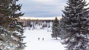 4th Feb 2020 - Chinook Skiers