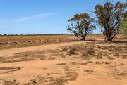 6th Feb 2020 - It's dry