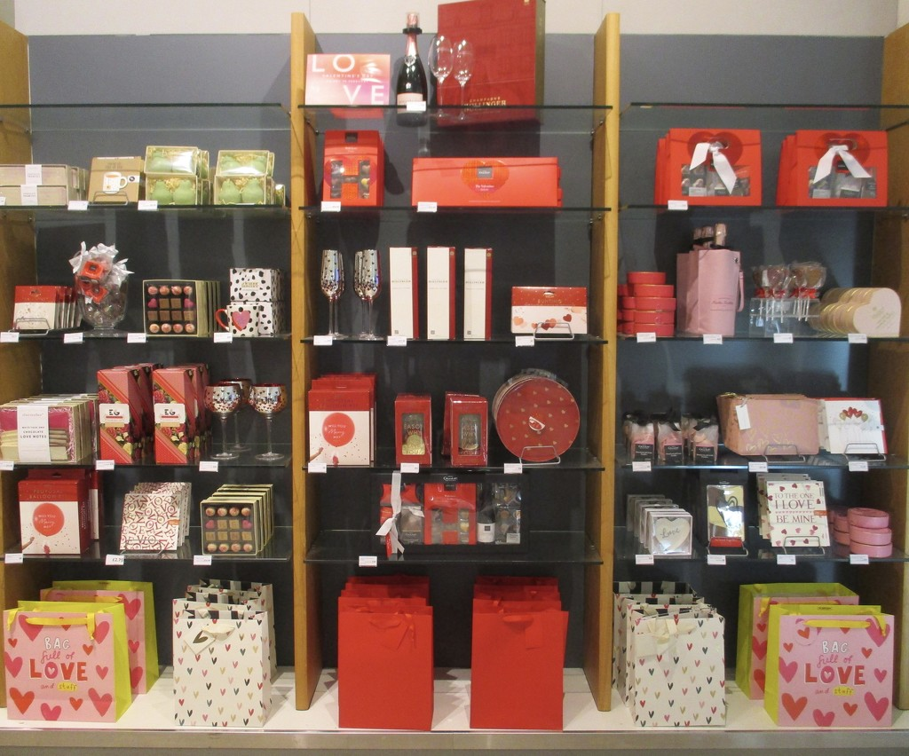 Valentine Display  by foxes37