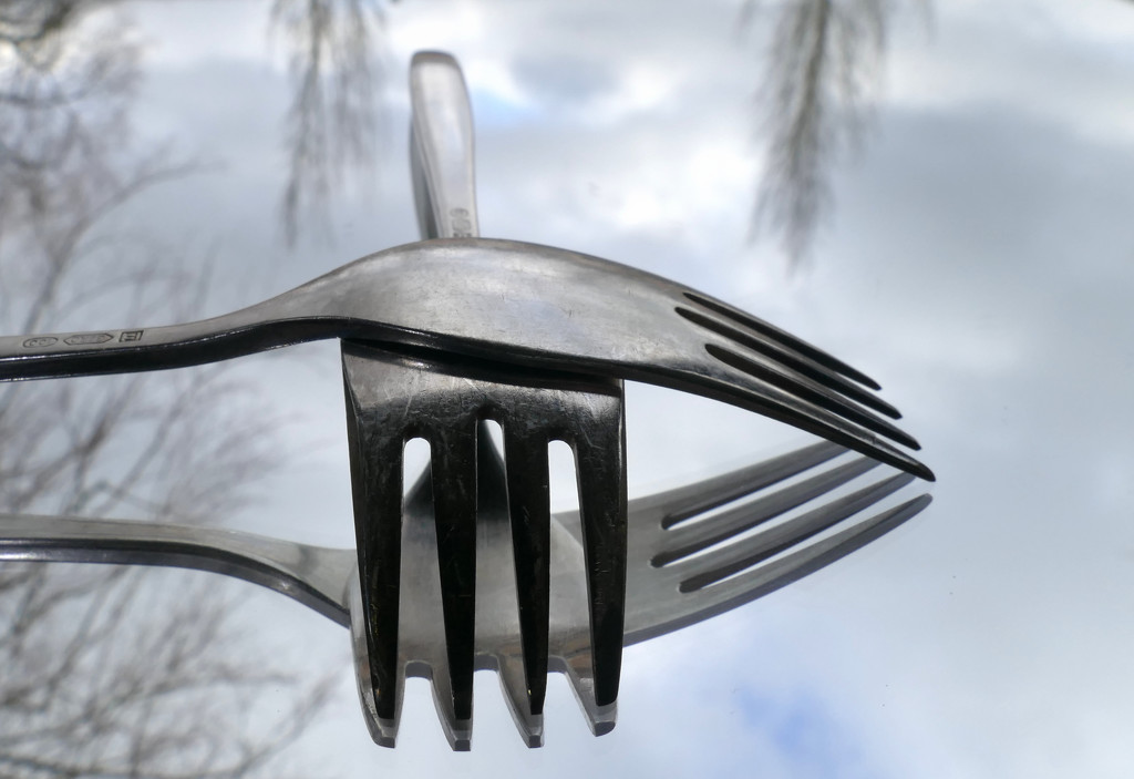 fork by marijbar