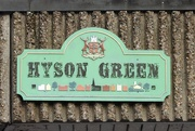 2nd Feb 2020 - Hyson Green