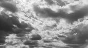 7th Feb 2020 - Cloudy