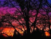 6th Feb 2020 - Dreams Color the World