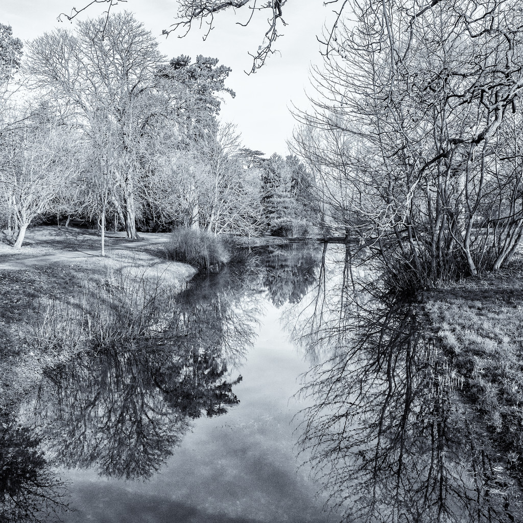 The view from the bridge  by pamknowler