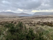 7th Feb 2020 - Mourne Mountains