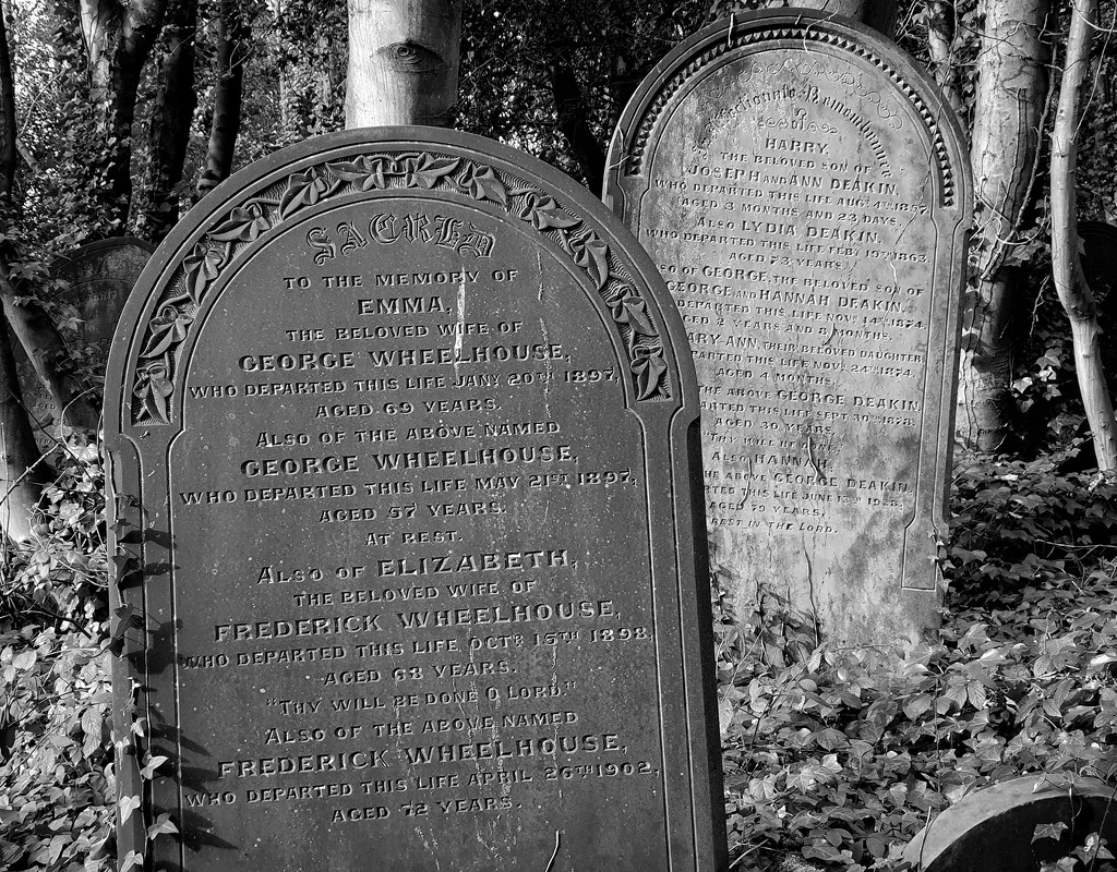 Wardsend cemetery by isaacsnek