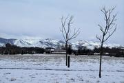 7th Feb 2020 - Fresh snow