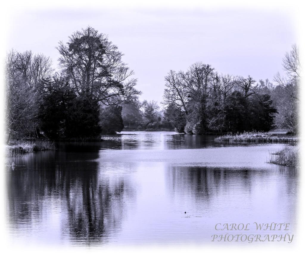The Lake In Winter by carolmw
