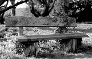 8th Feb 2020 - Doddington Bench