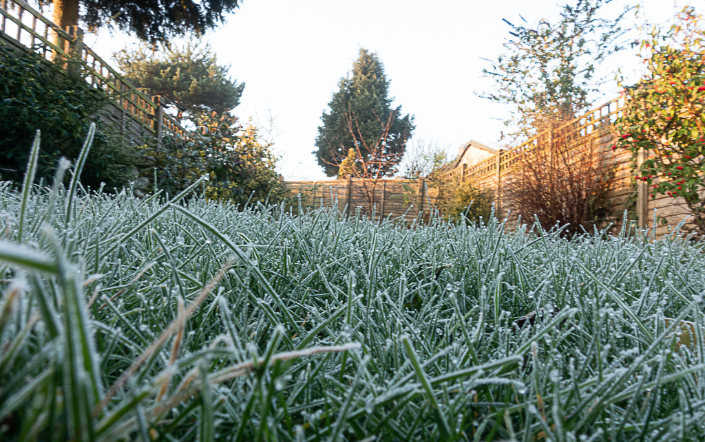 night frost and morning sun-03134 by jmm