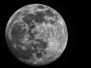 8th Feb 2020 - Snow Moon