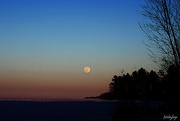 8th Feb 2020 - Super Moon