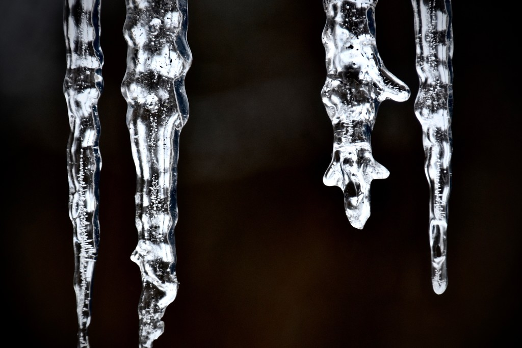 Icicles  by vera365