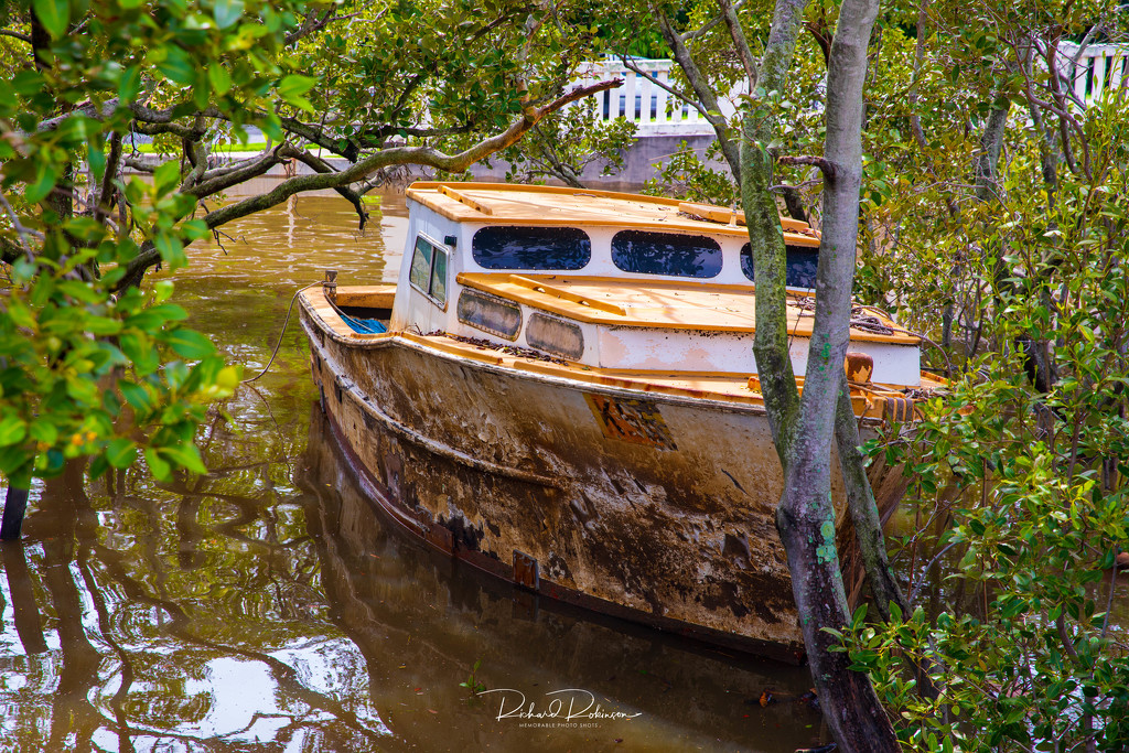 Boat in Mangroves by brains970
