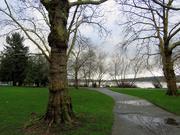 9th Feb 2020 - Green Lake Path