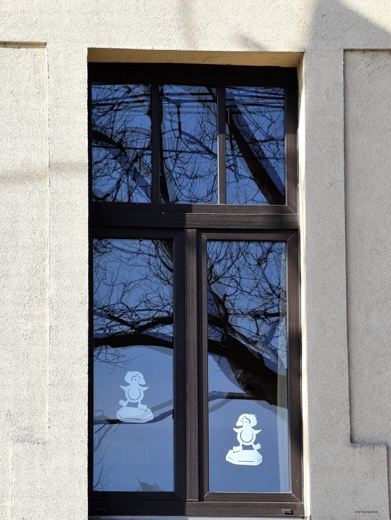 School window by kork