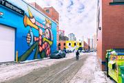 7th Feb 2020 - Back Alley Beauty