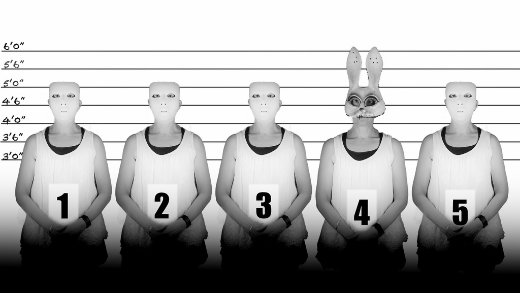 the usual suspects by fiveplustwo