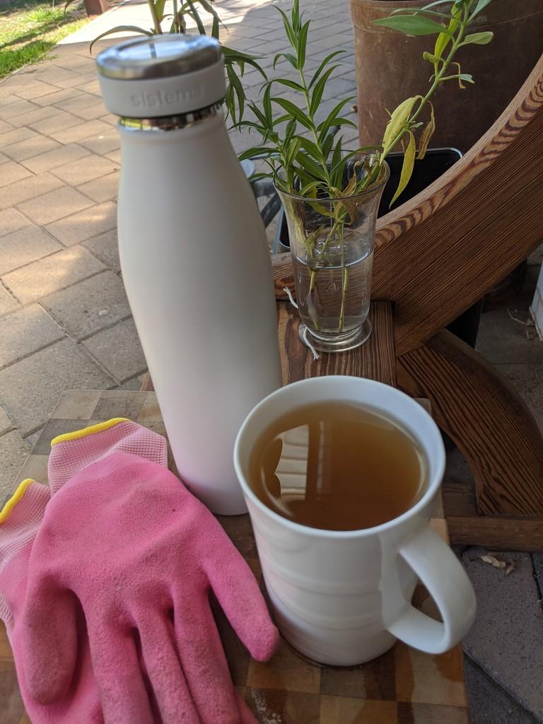 Cuppa break by sandradavies