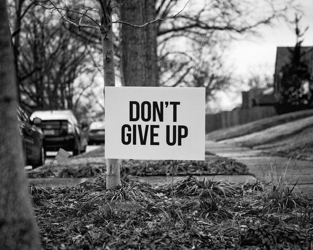 Encouraging Words by rosiekerr