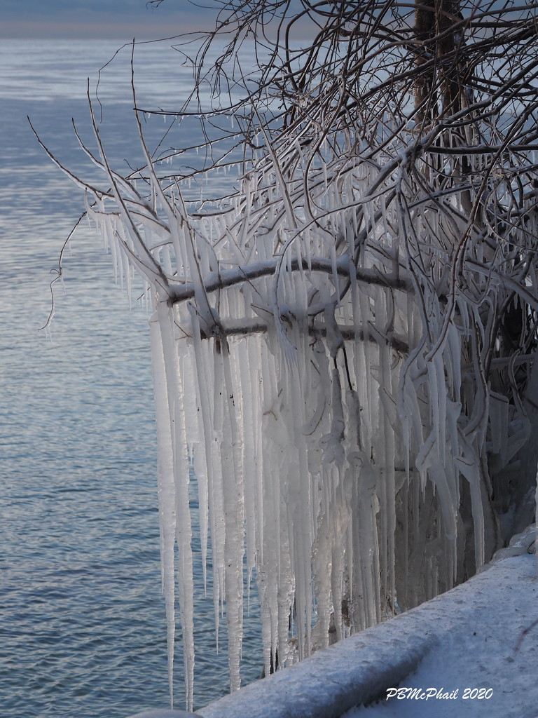 Nature's Ice Sculpture 1 by selkie