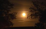 9th Feb 2020 - Tonight's Moon Rise!