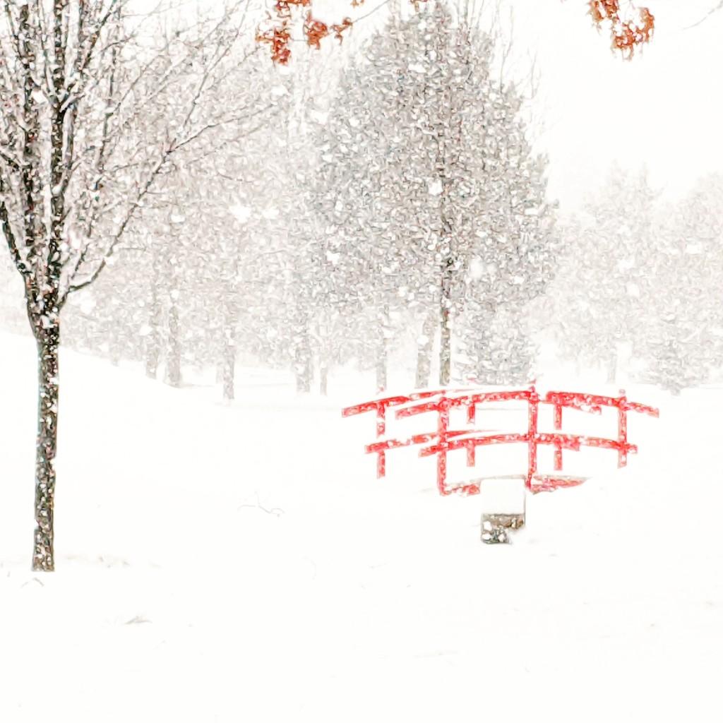 Winter Again by gq