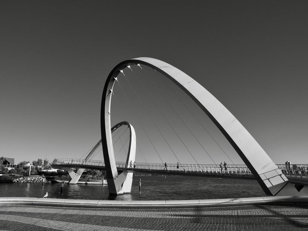 Elizabeth Quay Pedestrian Bridge P2020953 by merrelyn
