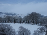 10th Feb 2020 - Unexpected snowfall