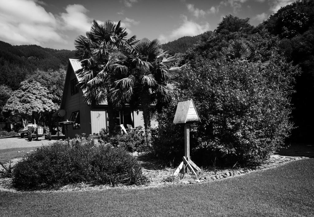 Birdhouse by kiwinanna
