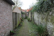 12th Feb 2020 - Love those alley`s